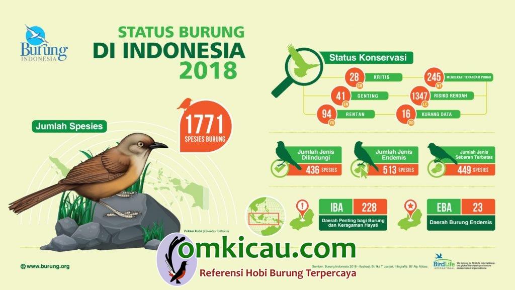 jumlah spesies burung di Indonesia