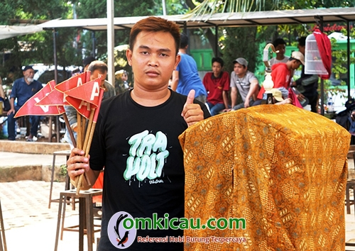 Cucak Ijo Giok Aceh