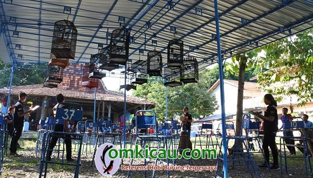 lomba burung di Blora
