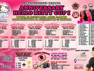 Anniversary Hello Kitty Cup I