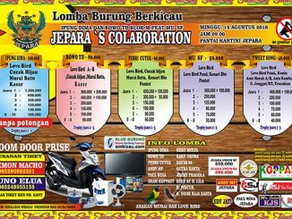Jepara's Colaboration