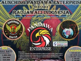 Launching Pandawa Enterprise