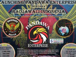 Launching Pandawa Enterprise