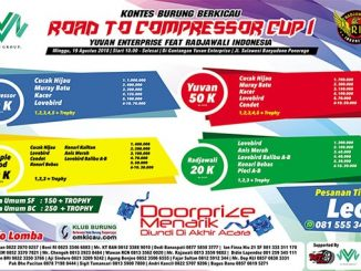 Road to Compressor Cup I