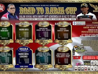 Road to Radja Cup