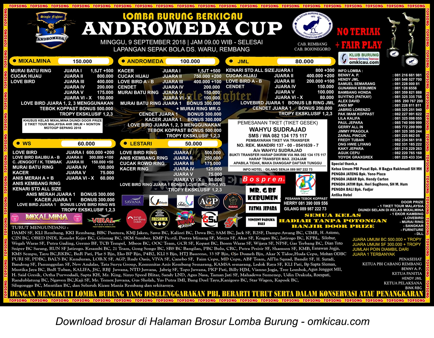 Andromeda Cup