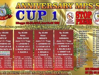 Anniversary MPS SF Cup 1
