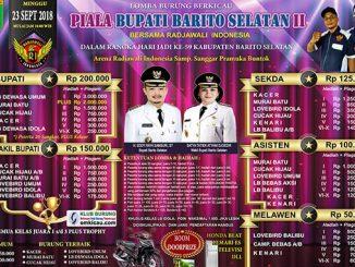Piala Bupati Barito Selatan II