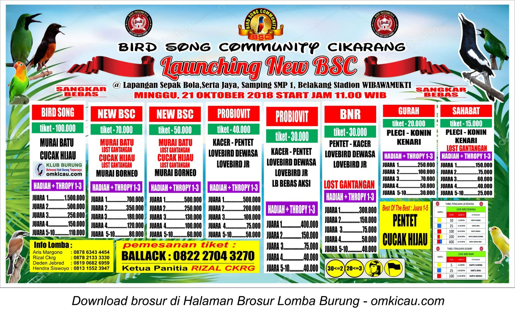 Launching New BSC