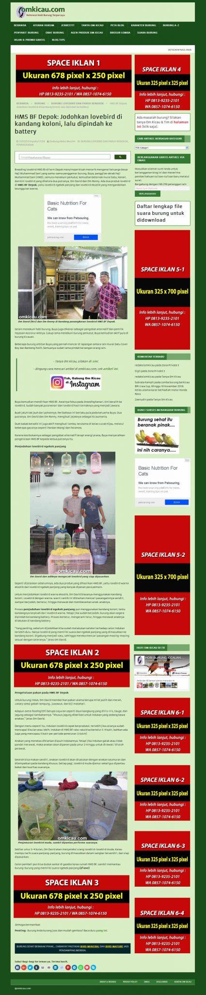 ruang iklan omkicau.com