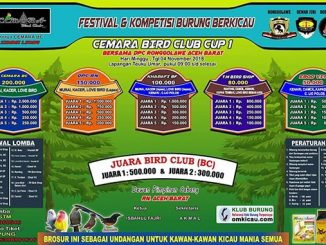Cemara Bird Club Cup 1
