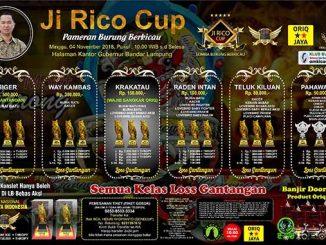 Ji Rico Cup