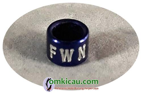 ring FWN