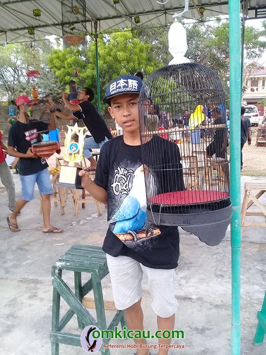 lovebird Tayo