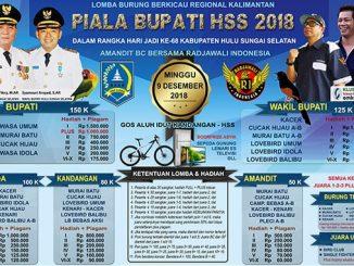 Piala Bupati HSS