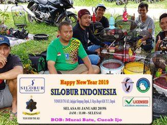 Happy New Year Silobur Indonesia