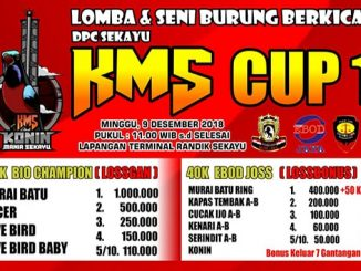 KMS Cup 1