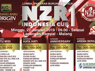 NzR Indonesia Cup 1