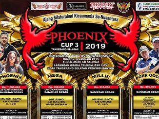 Phoenix Cup 3
