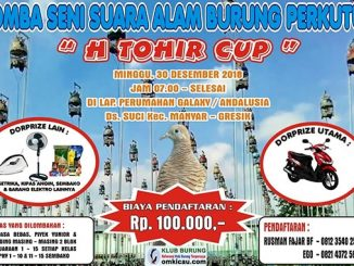 H Tohir Cup