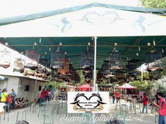 Shama Splash Arena