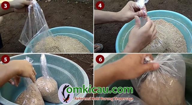 membuat dedak fermentasi
