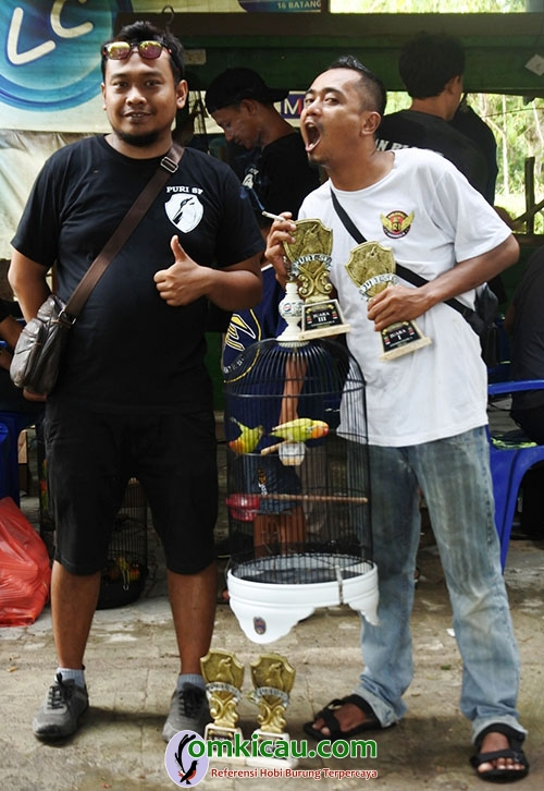 Lovebird Suromadu