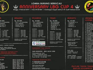 Anniversary LBG Cup 4