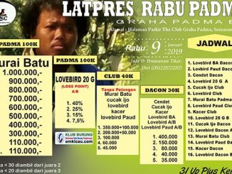 Latpres Rabu Padma