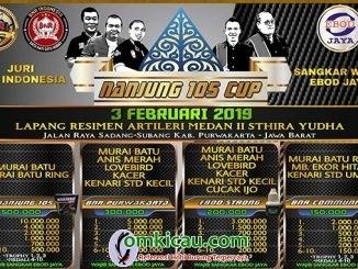 Nanjung 105 Cup