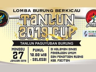 Tanlun 2019 Cup