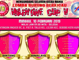 Valentine Cup V