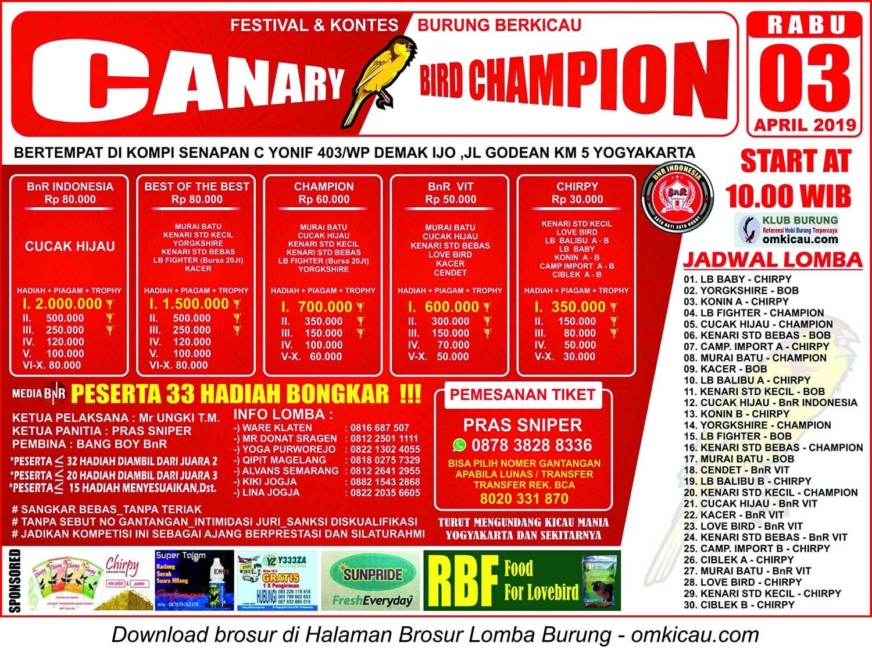 Canary Bird Champion