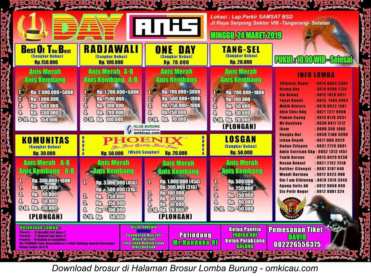 1 Day Anis
