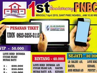 1st Anniversary PNBC