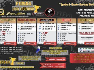 Final Liga Lovebird