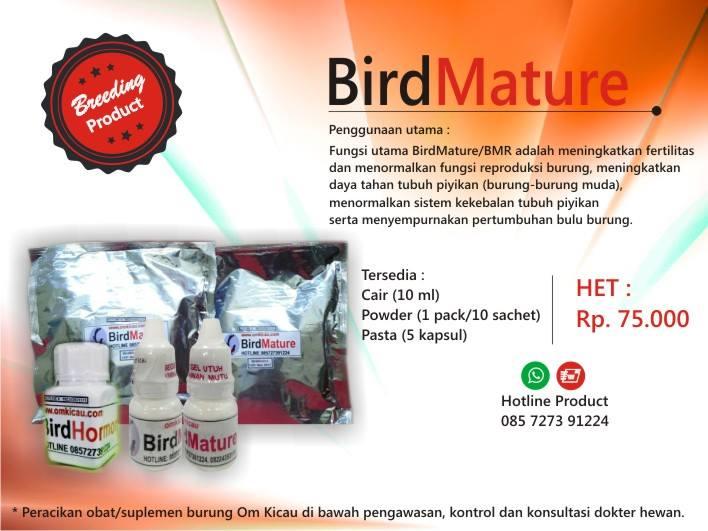 Bird Mature