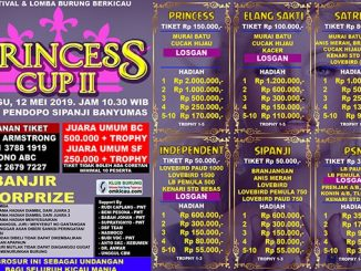 Princess Cup II