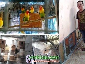 Farm Bird Collection FBC