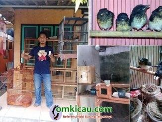 Vicky Bird Farm