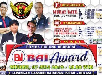 BAI Award