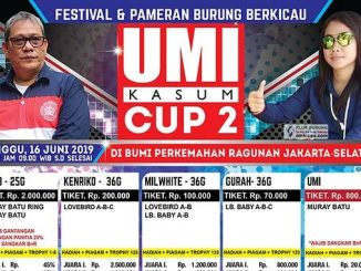 Umi Kasum Cup 2