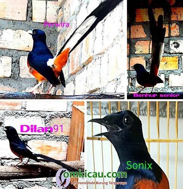 HRP Bird Farm