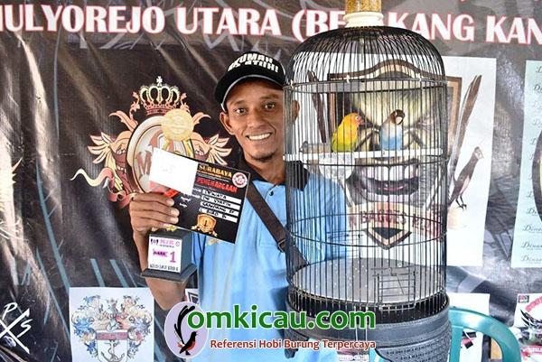 lovebird Dewata