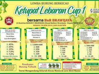 Ketupat Lebaran Cup