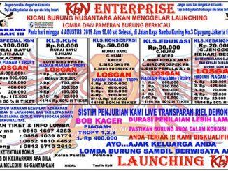 Launching KbN Enterprise