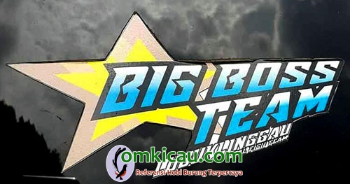 logo Big Boss Team