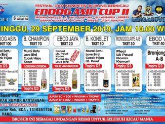 Endog Asin Cup II