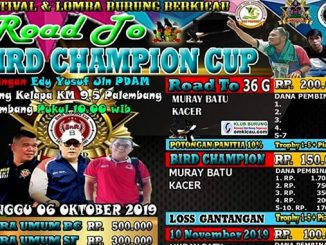 Road to Bird Champion Cup
