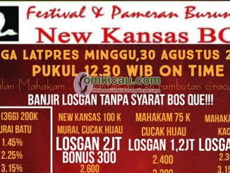 Jadwal Mega Latpres New Kansas BC